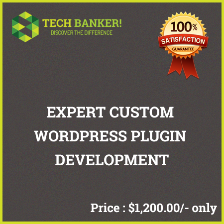 WordPress Related Services-expert-custom-wordpress-plugin-development