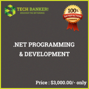 Website Programming Related Services-net-programming-development