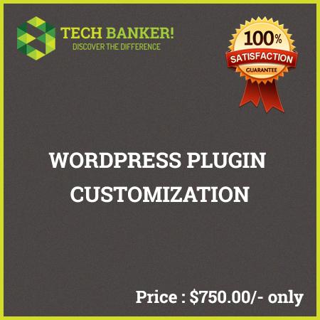 WordPress Related Services-wordpress-plugin-customization