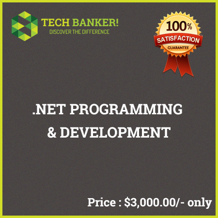 Website Programming Related Services-net-programming-development
