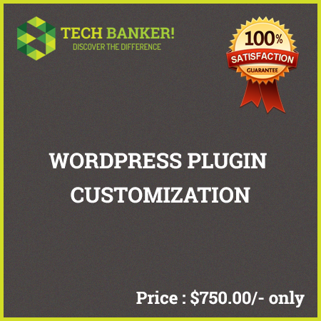 WordPress Related Services-wordpress-plugin-customization